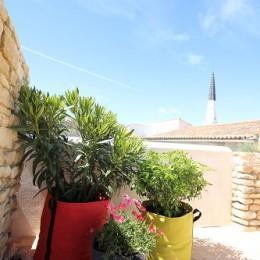 Laurier Rose et oranger du mexique sur la terrasse